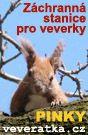 Veveratka.cz - středisko pro záchranu veverky obecné